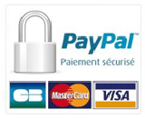 Icon Paiement Paypal